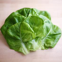 NYC Grown Butterhead Lettuce