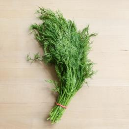 Organically Grown Dill