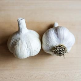 Organically Grown Music Garlic