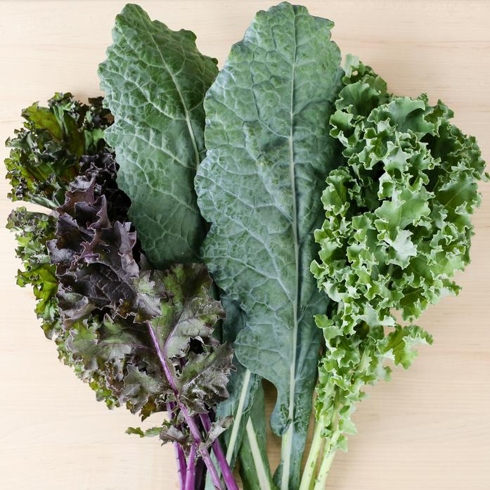 Organically Grown Tri-Color Kale Bunch